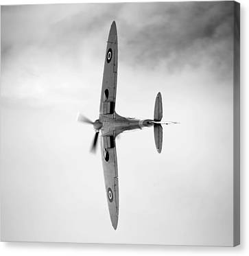 Spitfire. Canvas Print by Ian Merton