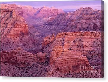 San Rafael Swell Canvas Print - Splendor Of Utah by Bob Christopher
