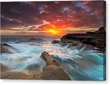 Split Finger  Canvas Print by Mark Lucey