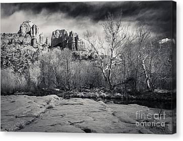 Spooky Castle Rock Canvas Print by Darcy Michaelchuk