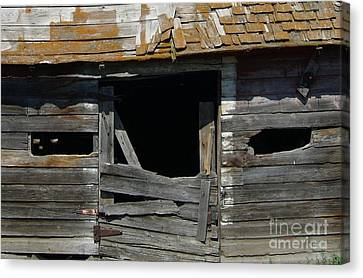 Canvas Print featuring the photograph Spooky Face by Jim Sauchyn