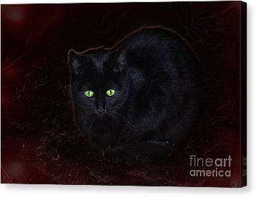 Spooky Canvas Print by The Stone Age