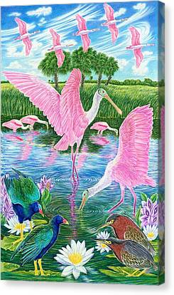 Spoonbill Heaven Canvas Print by Tim McCarthy