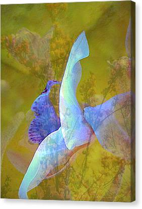 Spread To The Wind Canvas Print by Shirley Sirois