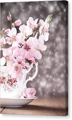 Spring Blossom Canvas Print by Amanda Elwell