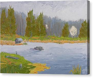 Spring Blossoms Beaver Pond Canvas Print by Robert P Hedden