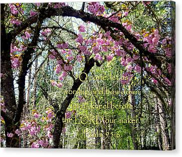 Spring Blossoms With Scripture Canvas Print by Cindy Wright