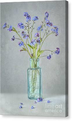 Spring Blues Canvas Print by Jacky Parker