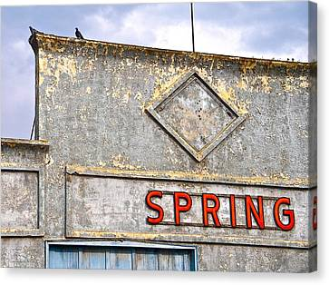 Canvas Print featuring the photograph Spring by Brian Sereda