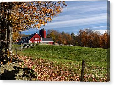 Spring Brook Farm Canvas Print by Butch Lombardi