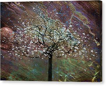 Spring Dreaming Canvas Print by Gray  Artus
