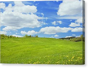 Spring Farm Landscape With Blue Sky In Maine Canvas Print by Keith Webber Jr