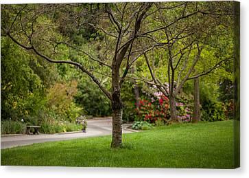 Spring Garden Landscape Canvas Print by Mike Reid