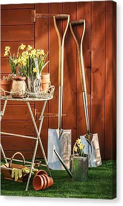 Spring Gardening Canvas Print by Amanda Elwell