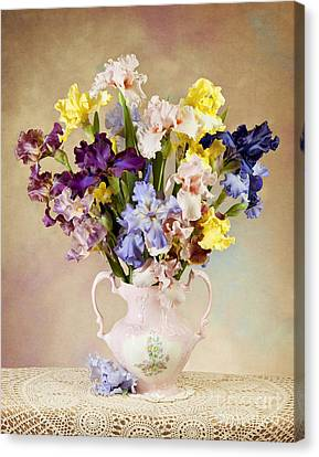 Canvas Print featuring the photograph Spring Grand Finale by Cheryl Davis