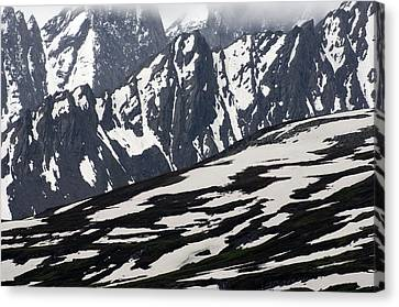 Spring In Alaska Mountains Canvas Print by Michael S. Quinton
