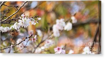 Spring In Autumn Canvas Print by Eena Bo