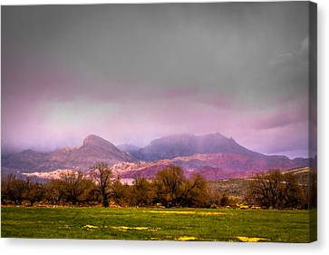 Spring Mountain Ranch In Red Rock Canyon Canvas Print by David Patterson