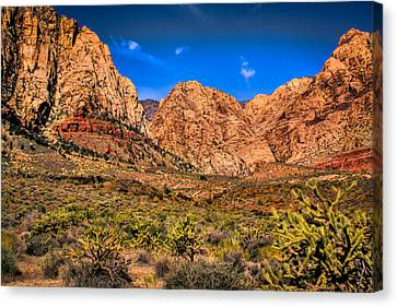 Spring Mountain Ranch In Red Rock Canyon II Canvas Print by David Patterson