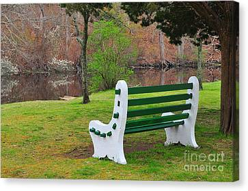 Spring On The Ponaganset River  Canvas Print by Catherine Reusch Daley