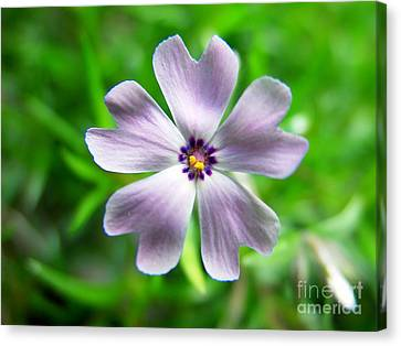 Spring Purple Canvas Print