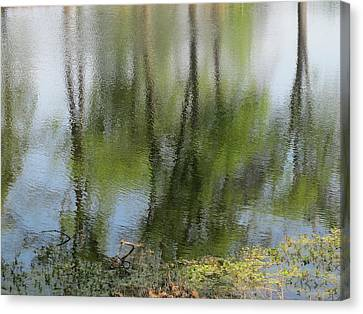 Spring Reflections Canvas Print by Valia Bradshaw