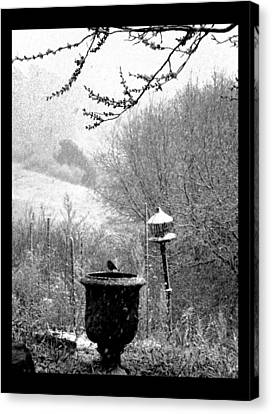 Canvas Print featuring the photograph Spring Snowstorm 2012 by Susanne Still