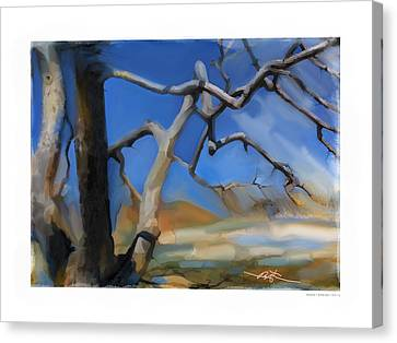 Spring Thaw 1 Canvas Print by Bob Salo