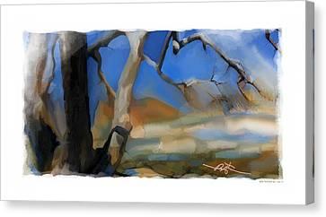 Spring Thaw 2 Variation Canvas Print by Bob Salo