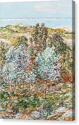 Springtime Vision Canvas Print by Childe Hassam