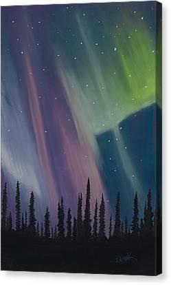 Spruce Silhouette Canvas Print