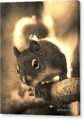 Squirrel In Sepia Canvas Print by Janeen Wassink Searles