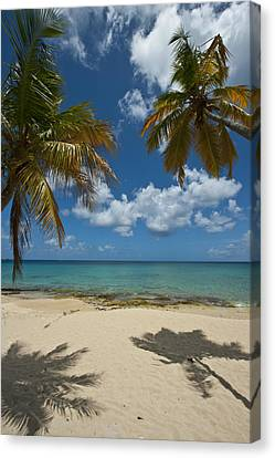 St Croix Afternoon Canvas Print