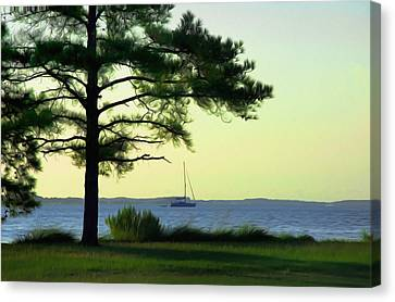 St. George's Island Canvas Print by Bill Cannon