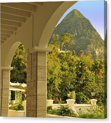 St. Lucia Mountain View Canvas Print by Cindy Lee Longhini