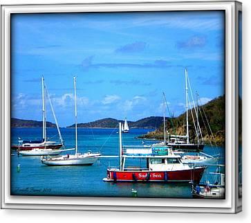 Canvas Print featuring the photograph St-thomas Virgin Islands by Danielle  Parent
