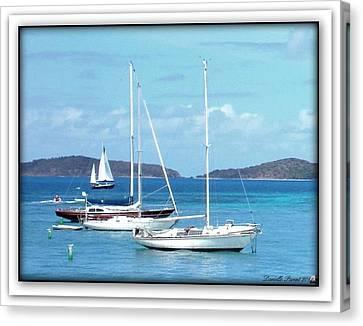 Canvas Print featuring the photograph St-thomas Virgin Islands Trio by Danielle  Parent