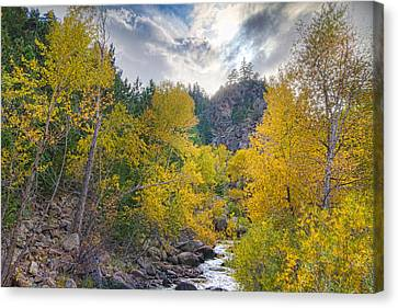 St Vrain Canyon Autumn Colorado View Canvas Print by James BO  Insogna