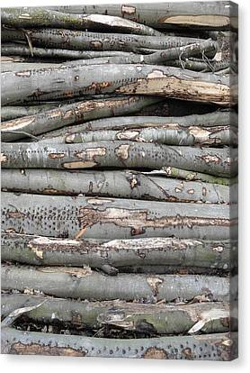 Stack Canvas Print by Michael Standen Smith