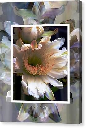 Stacked Floral Canvas Print by Regina Arnold