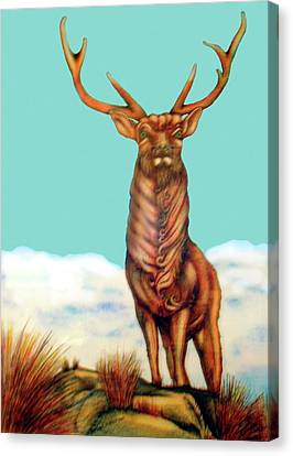 Stag Canvas Print by Barbara Stirrup