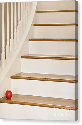 Stairs And Apple Canvas Print by Andersen Ross