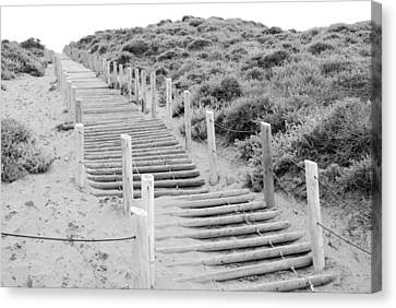 Stairs At Baker Beach Canvas Print by Shane Kelly