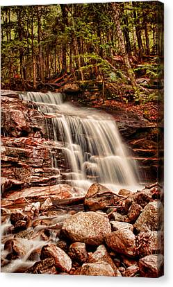 Stairs Falls Canvas Print by Heather Applegate