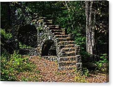 Canvas Print - Stairs To Nowhere by Tanya Chesnell