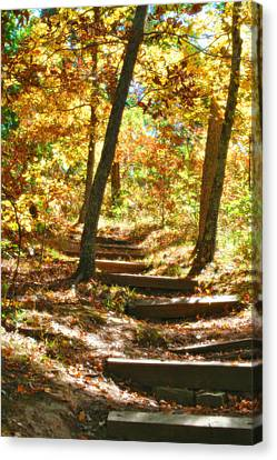 Canvas Print featuring the photograph Stairway To Heaven by Peggy Franz