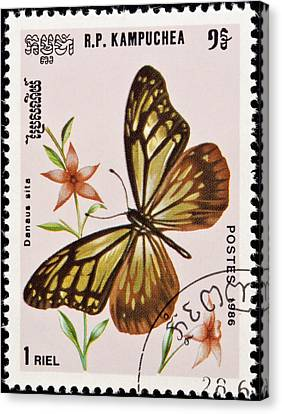 Stamp. Butterfly And Flower. Canvas Print by Fernando Barozza