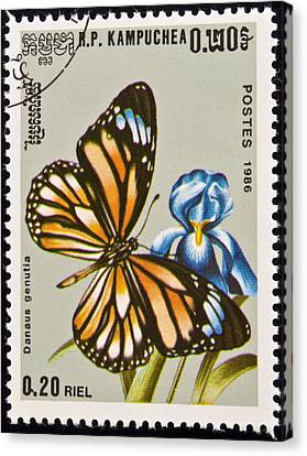 Stamp. Butterfly On Flower. Canvas Print by Fernando Barozza
