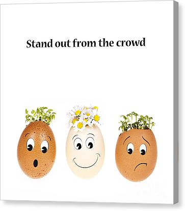 Stand Out From The Crowd Canvas Print by Jane Rix