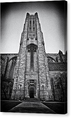 Stand Tall Stand Strong Canvas Print by CJ Schmit